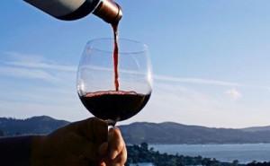 vino-300x185